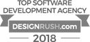 Design Rush Top Software Development Agency