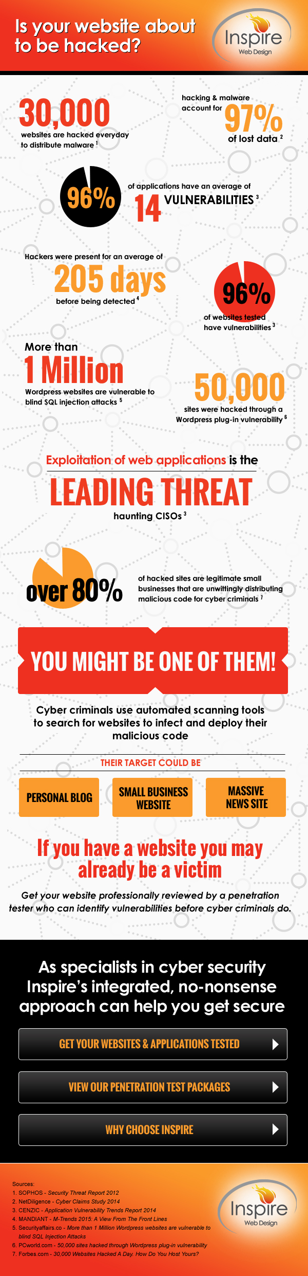 Web Penetration Testing Infographic