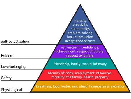 Msow Hierarchy of Needs